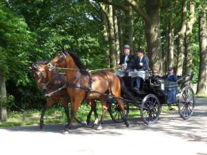 Nederlands Kampioenschap Traditioneel Gerij 2009